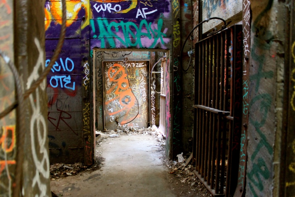 Go Wild at the Abandoned Zoo in Griffith Park