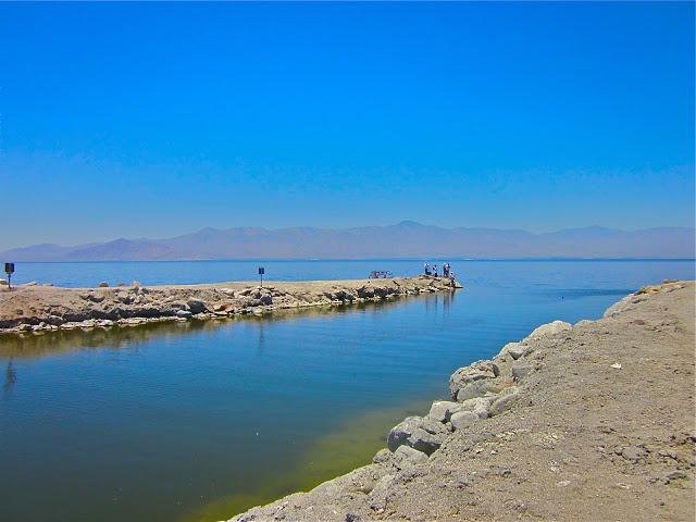 Salton sea post apocalyptic world one cool thing every for Salton sea fishing