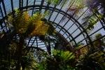 botanic garden balboa park