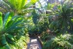 botanic garden san diego