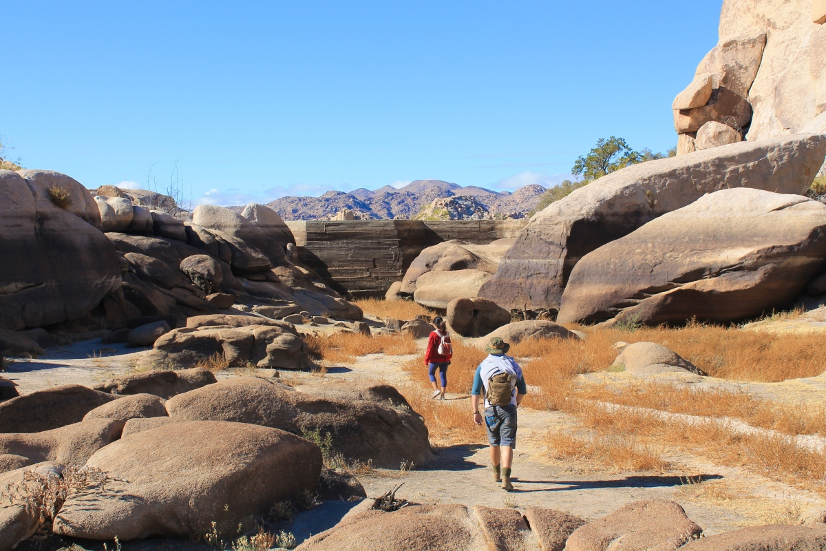 Barker Dam Trail Joshua Tree National Park One Cool