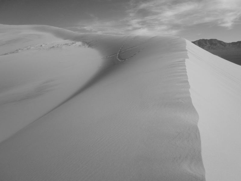 kelso dunes black and white