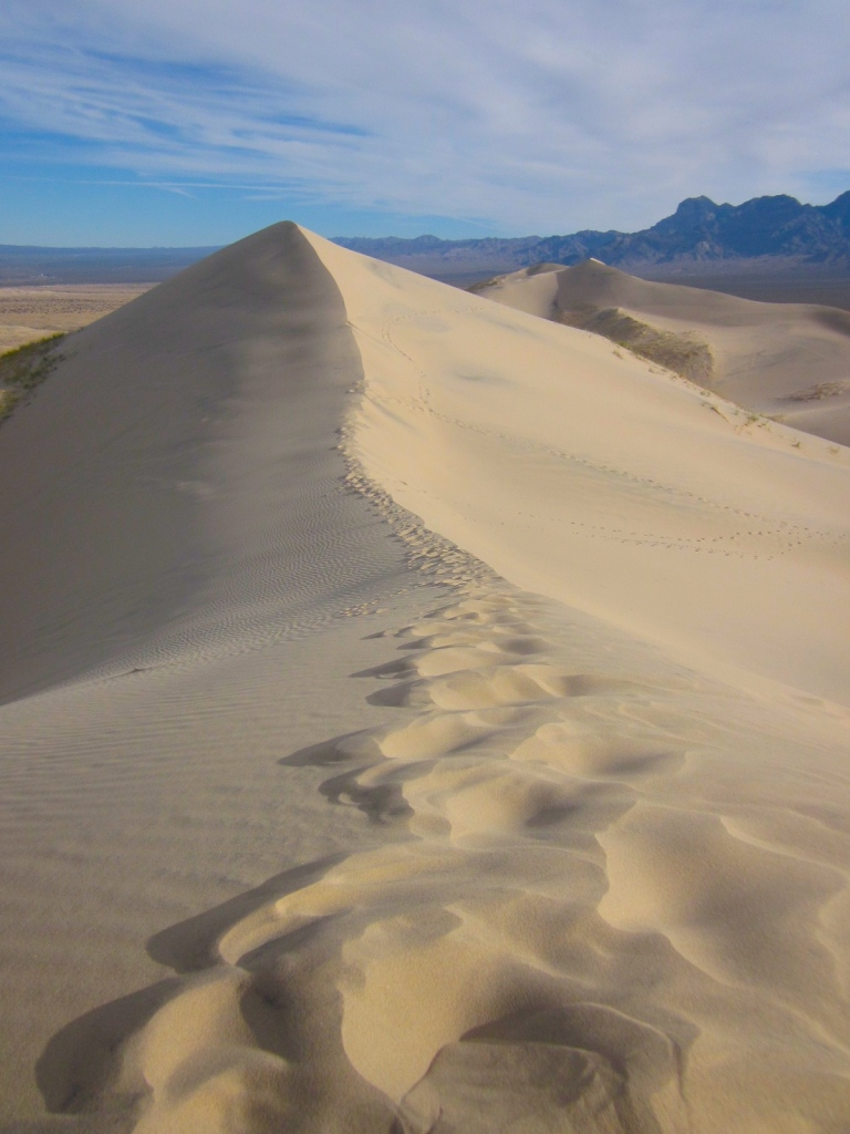 The ridge of the dune