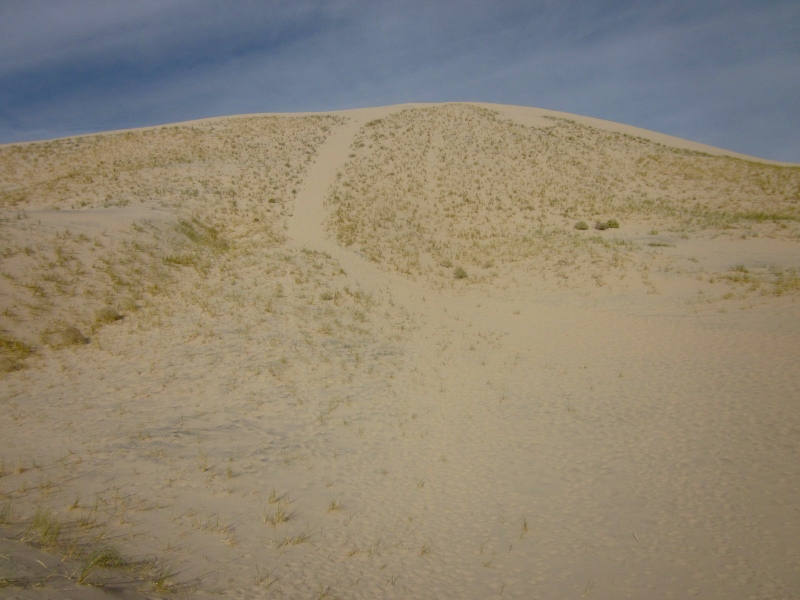 Don't hike up this slope; it's too stepp and too much work unnecessary. Try to find a small slope to hike up to the ridge of the dunes.