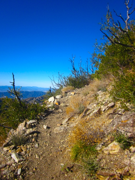 The trail up to San Gabriel