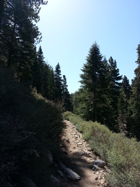 The trail is clear and easy to follow the whole way
