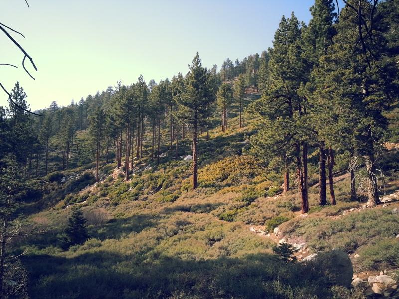 Beautiful scenery. Almost reminds me of Yosemite.