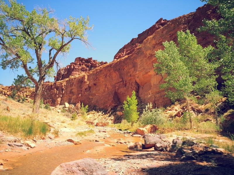 Sulpher Creek Canyon
