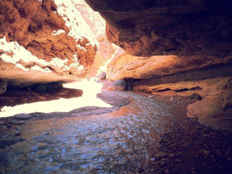 the creek becomes narrow at parts